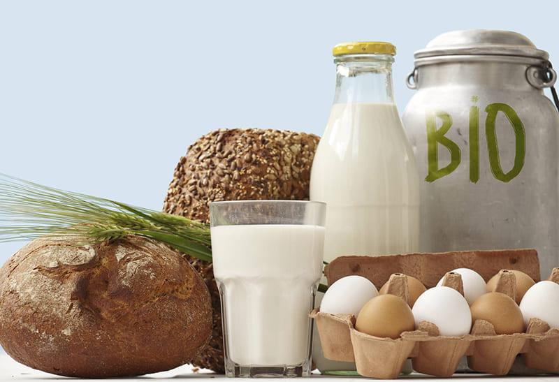 Биопродукты молочные РФ