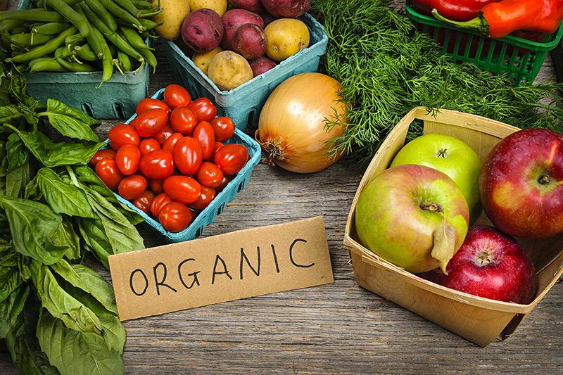 Органические продукты России