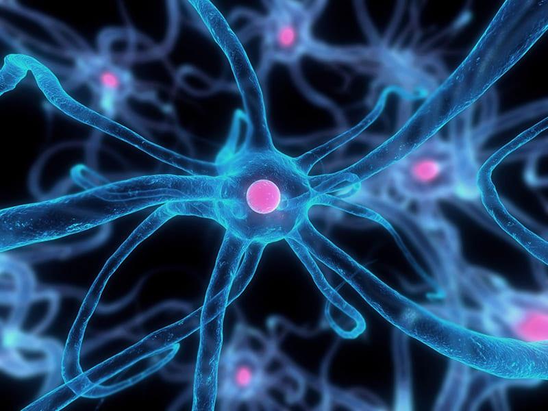 Восстановление клеток организма