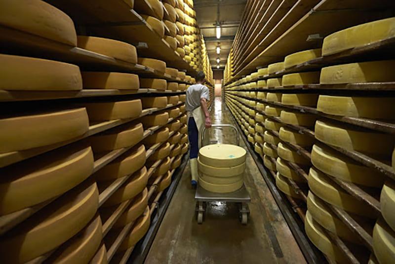Условия хранения сыра