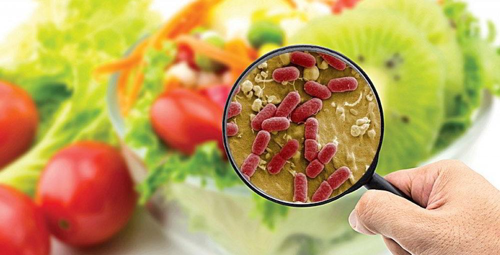 Бактерии на продуктах