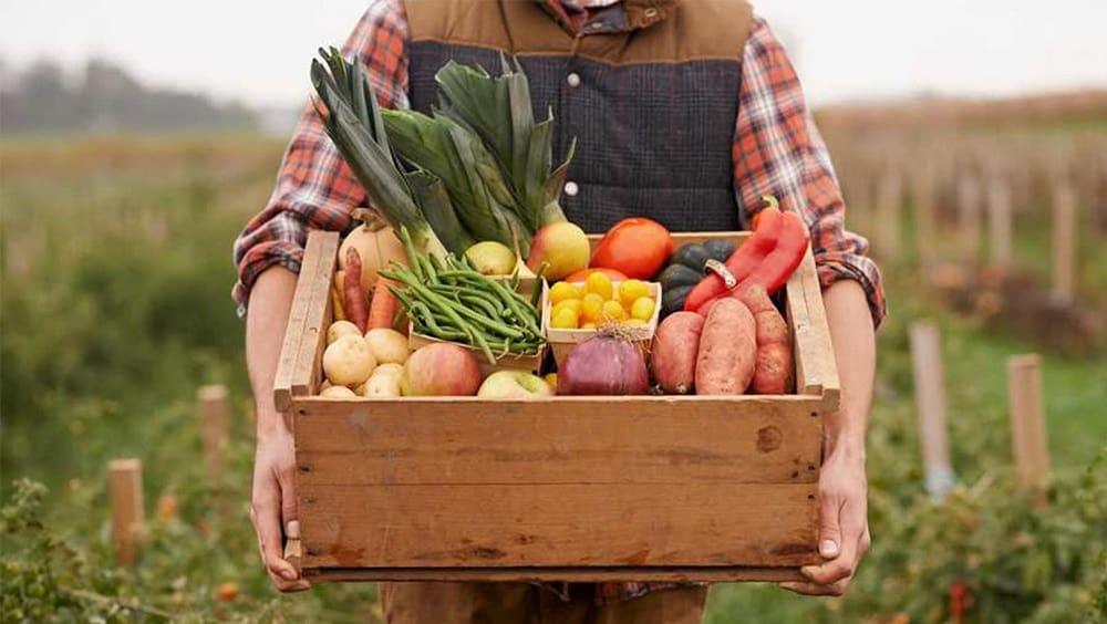 Покупка фермерских продуктов
