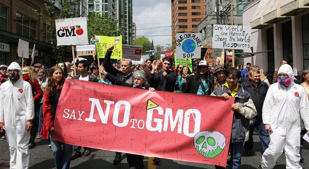 Противники ГМО на улице