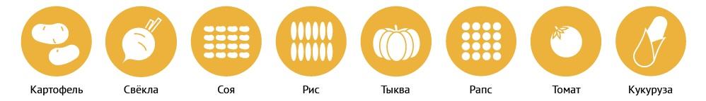 Распространённые продукты с ГМО
