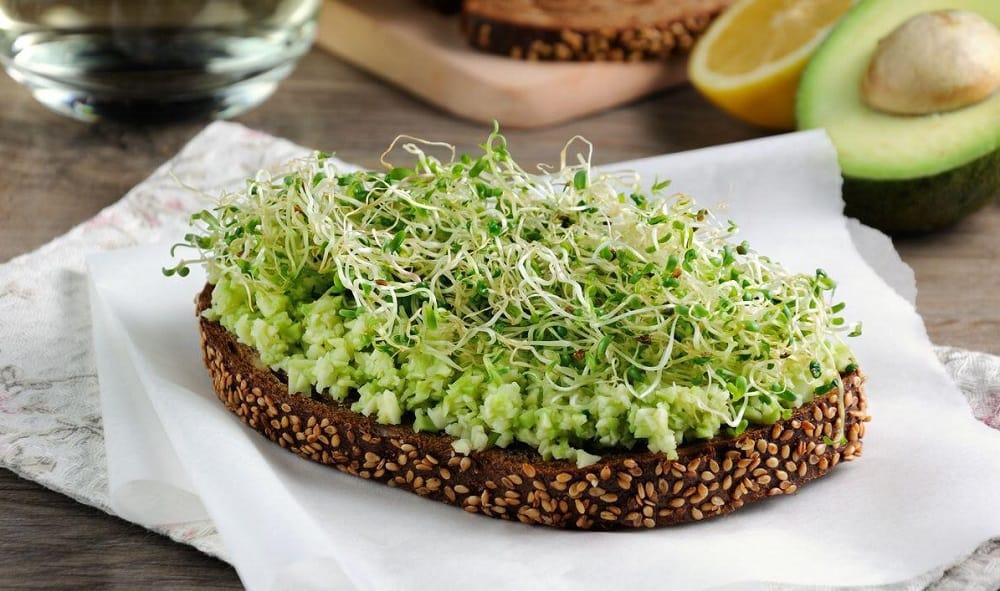 Сэндвич с микрозеленью