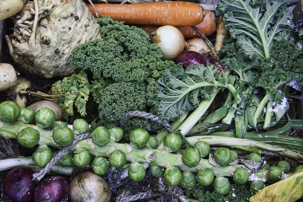 Свежие овощи зимой