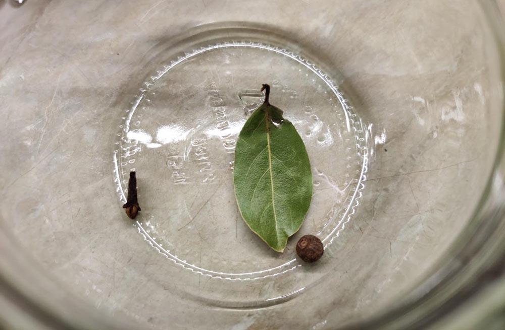 Лавровый лист, перец и гвоздика для индоутки