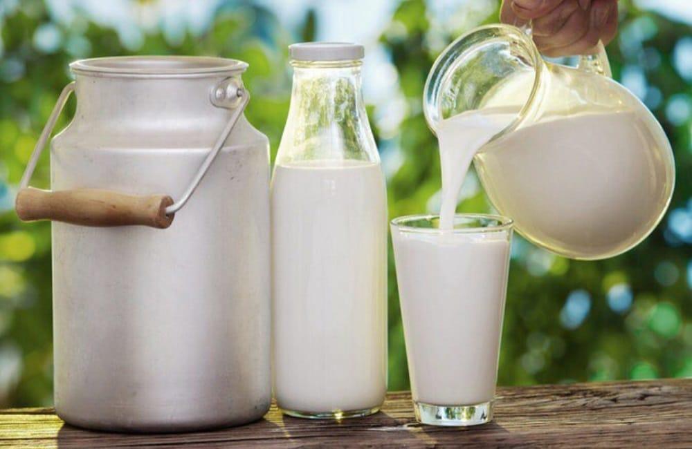 Молоко для сыра