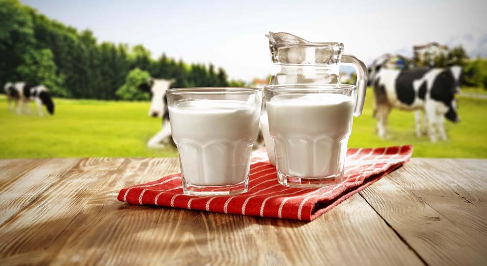Молоко для томления